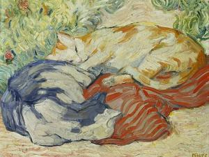 Cat on a Red Cloth, 1909/1910 by Franz Marc