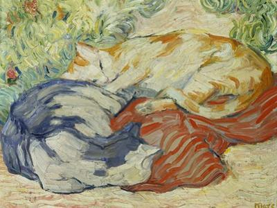 Cat on a Red Cloth, 1909/1910