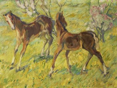 Fohlen Auf Der Weide, 1909