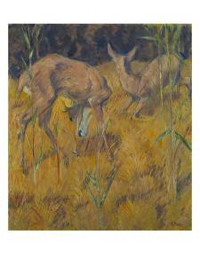 Rehe Im Schilf, 1909 by Franz Marc