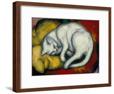 The White Cat, 1912