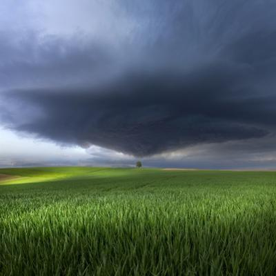 Thunderstorm Cell Over the Alb Plateau by Franz Schumacher