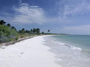 Bahia Honda Key, the Keys, Florida, United States of America (U.S.A.), North America by Fraser Hall