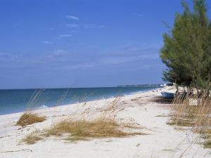 Beach, Anna Maria Island, Gulf Coast, Florida, United States of America, North America by Fraser Hall