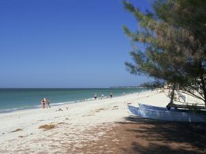 Beach North of Longboat Key, Anna Maria Island, Gulf Coast, Florida, USA by Fraser Hall