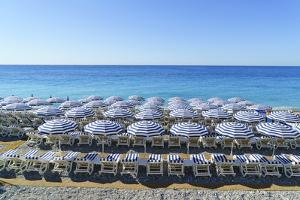 Blue and white beach parasols, Nice, Alpes-Maritimes, Cote d'Azur, Provence, French Riviera, France by Fraser Hall