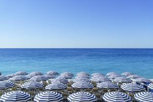 Blue and white beach parasols, Nice, Cote d'Azur, Alpes-Maritimes, Provence, French Riviera, France by Fraser Hall