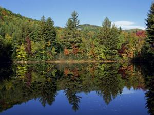 Fall Foliage Reflected in a Lake, Near Jackson, New Hampshire, New England, USA by Fraser Hall