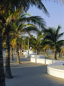 Fort Lauderdale, Wave Wall Promenade, Florida, USA by Fraser Hall