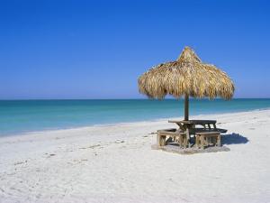Gulf Coast Beach, Longboat Key, Florida, USA by Fraser Hall
