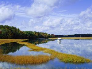 Still Water Reflecting the Sky Near Kennebunkport, Maine, New England, USA by Fraser Hall