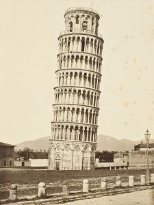 Campanile, Pisa, c.1850 by Fratelli Alinari