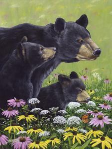 Black Bears by Fred Szatkowski