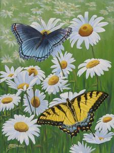 Butterflies and Daisies by Fred Szatkowski