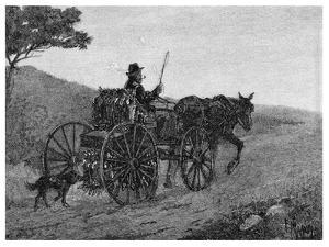 A Colac Rabbit Trapper, 1886 by Frederic B Schell