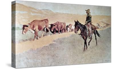 Trailing Texas Longhorns