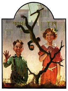 """Pet Shop Monkey,""April 9, 1927 by Frederic Stanley"
