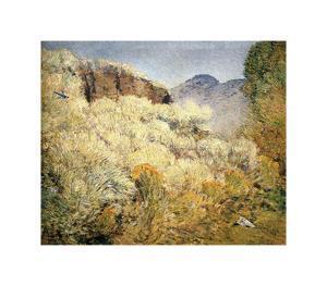 Harney Desert, 1908 by Frederick Childe Hassam