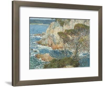 Point Lobos, Carmel, 1904