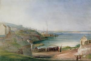 Darling Harbour from Millers Point by Frederick Garling