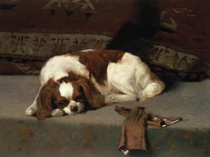 King Charles Spaniel Resting by Frederick Hall