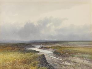 Cranmere Pool, Dartmoor , C.1895-96 by Frederick John Widgery