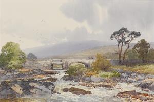 Hill Bridge on the Tavy , C.1895-96 by Frederick John Widgery