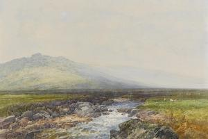 Valley of the Rocks on the West Okement , C.1895-96 by Frederick John Widgery