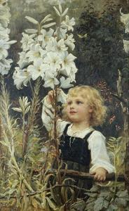 Lilies by Frederick Morgan