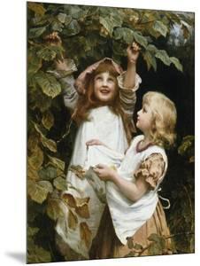 Woodland Harvest by Frederick Morgan