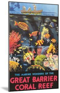 Great Barrier Coral Reef c.1933 by Frederick Phillips