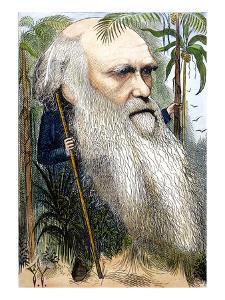 Charles Robert Darwin by Frederick Waddy
