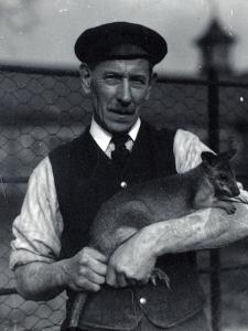 A Keeper Holds a Wallaby, October 1920 by Frederick William Bond