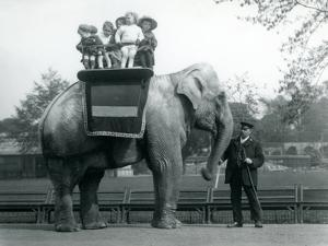An Indian Elephant, with Keeper, Taking Small Children for a Ride at London Zoo, C.1913 by Frederick William Bond