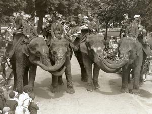 Elephant Rides at London Zoo, July 1936 by Frederick William Bond