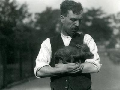 Keeper Harry Warwick Cradles a Baby Warthog in His Arms at London Zoo, August 1922