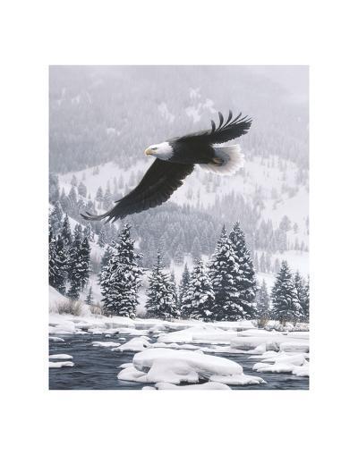 Free Flight (detail)-Daniel Smith-Art Print