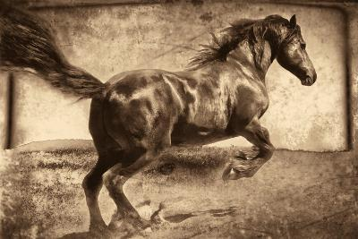 Free Spirit-Jennifer Broussard-Art Print