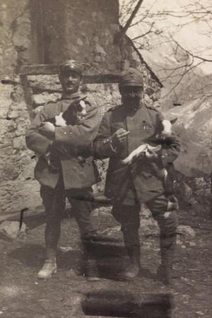 Free State of Verhovac-July 1916: Italian Soldiers with the Goats in Arm in Val D'Aupa--Photographic Print