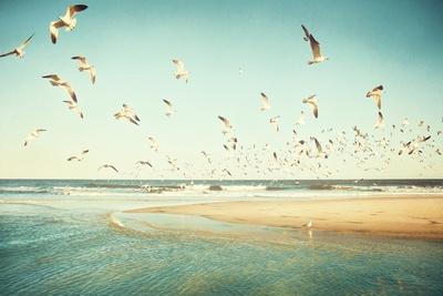 Freedom-Carolyn Cochrane-Photographic Print