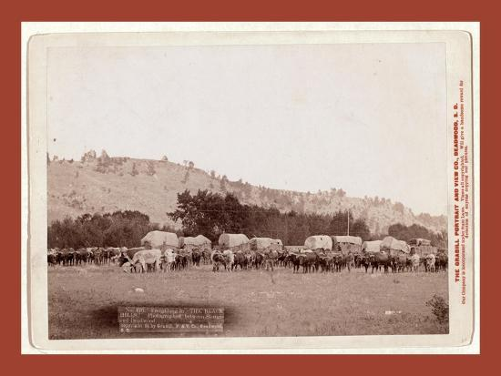 Freighting in the Black Hills. Photographed Between Sturgis and Deadwood-John C. H. Grabill-Giclee Print