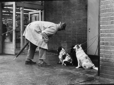 French Actor Jacques Tati Talking to a Couple of Dogs-Yale Joel-Premium Photographic Print