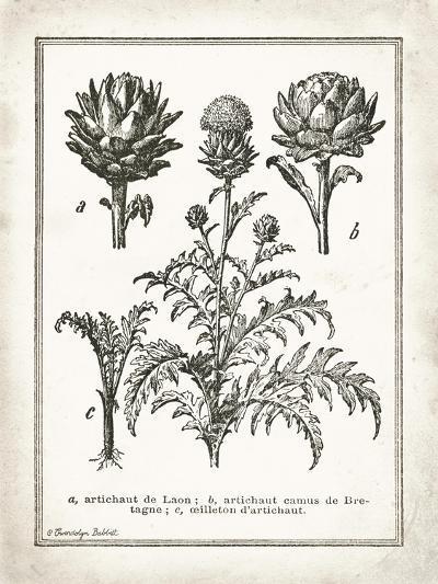 French Artichokes-Gwendolyn Babbitt-Art Print