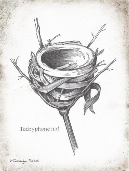 French Bird Nest I-Gwendolyn Babbitt-Art Print