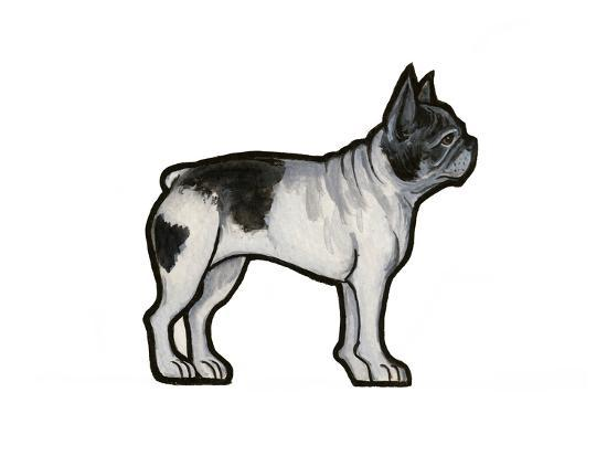 French Bulldog-Sally Pattrick-Art Print
