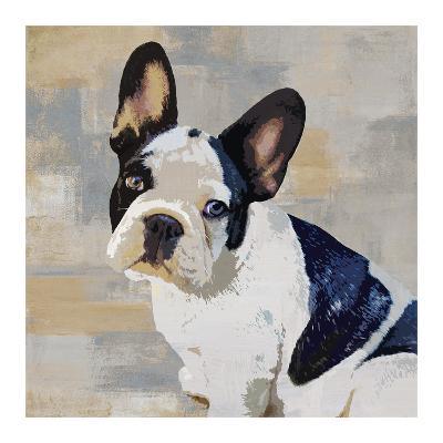 French Bulldog-Keri Rodgers-Giclee Print