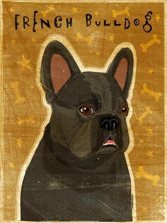 https://imgc.artprintimages.com/img/print/french-bulldog_u-l-q1af6ij0.jpg?p=0