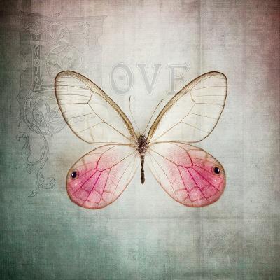 French Butterfly I-Debra Van Swearingen-Art Print