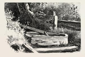 French Canadian Life, Wayside Watering Trough, Canada, Nineteenth Century