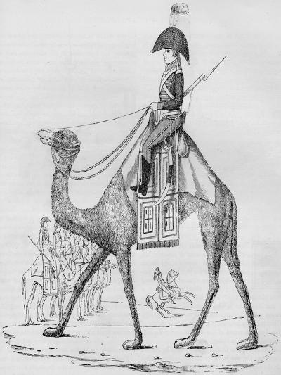 French Domedary Regiment. Captured with a Convoy in the Lybian Desert, May, 1801--Giclee Print